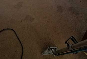 Carpet Cleaning | Hidden Hills | Carpet Cleaning Calabasas